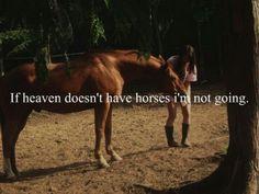 Nope. No horses, no me!