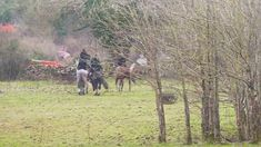 Hunt meet in Ireland Cross Country Jumps, Beach Rides, Day Off, Norfolk, Equestrian, Ireland, Hunting, Country Roads, Meet