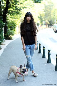 Cute style, cute french bulldog.