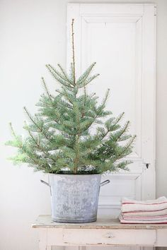 Dreamy Whites: French Farmhouse Christmas Items in the Shop, Wintersteen Farms Wreaths, and a Container Sale Christmas Tree Diy