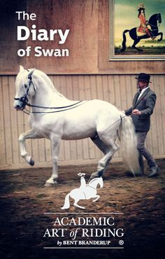 Learn from Bent as he trains his young PRE stallion Swan through his video diary 10 episodes now available on HorseLifestyle.TV