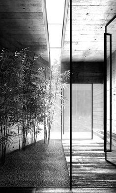 GLASS DOORS - GLASS WALL TUNNEL  - BOTANICAL -  Modern Minimalistic Home Exteriors & Interiors- HOME INTERIOR DESIGN IDEAS FOR YOUR MODERN MINIMALIST CHIC SELF - HOLLYWOOD HILLS LIFESTYLES - EXPENSIVE TASTE  - Karina Porushkevich #karinarussianpowpow {http://www.karinaporushkevich.com}