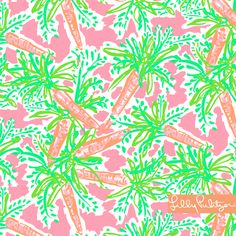 Lilly Pulitzer Spring '13 Print- Nibbles is perfect for Easter with the carrots!!