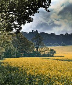 Belvoir Castle ~ Grantham, Leicestershire England