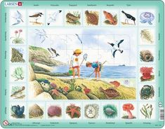 Larsen Puzzles Seaside Educational Jigsaw Puzzle - 48 Piece Tray & Frame Style Puzzle - Exclusive Premium Hand Made Puzzles - Imported from Norway Flower Names, Am Meer, Plant Species, Baby Clothes Shops, Kids Learning, Baby Shop, Norway, Seaside, Jigsaw Puzzles