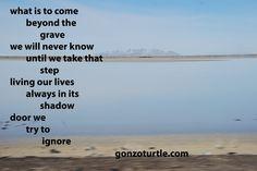 #gonzoturtle #poem #poetry #ReadThinkEvolve #life gonzoturtle.com
