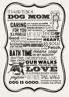 It's good to be a dog momma!
