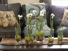 fresh and pretty for spring..glass containers, Reindeer Moss, and river rocks...