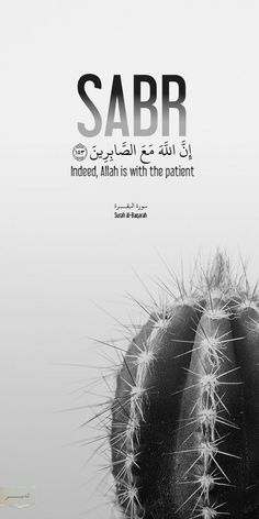 Sabr Islam, Islam Quran, Allah Islam, Quran Quotes Inspirational, Beautiful Islamic Quotes, Arabic Quotes, Motivational, Muslim Quotes, Religious Quotes