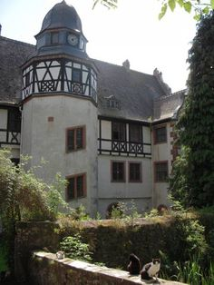 Freiburg Villa villa andreae koenigstein im taunus germany germany