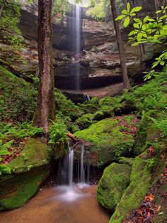 Laurel Gorge (Earthcache) in Kentucky, United States created by Abe and Sarah, MUST see next time I visit!! About 20 miles south west of Grayson.