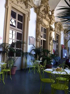 Turin, Italy, Alba, Plants, Luxury, Europe, Italia, Plant, Planets