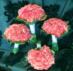 Carnation bouquets for bridesmaids Carnation Wedding, Carnation Bouquet, Flower Girl Bouquet, Bridal Bouquet Pink, Pink Carnations, Bridesmaid Bouquet, Wedding Bouquets, Bridesmaids, Affordable Wedding Flowers