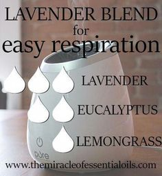 These are the top 5 lavender essential oil diffuser blends that you need to note down for stress relief, relaxation, sle. Helichrysum Essential Oil, Essential Oils For Colds, Essential Oil Diffuser Blends, Young Living Essential Oils, Doterra Diffuser, Oils For Energy, Cedarwood Oil, Diffuser Recipes, Aromatherapy Oils