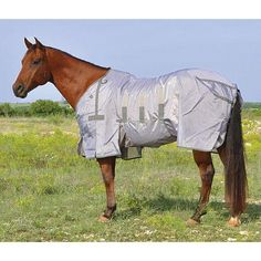 Horse Fly, Horse Tack, Pony Saddle, Fly Control, Classic Equine, Barrel Saddle, Tractor Supplies, Hot Rides, Stay Cool