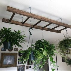 Walnut Stained Pot Rack Ladder 4 or 5 ft Plant and Basket Holder, Pot and Pan hanger storage. Room With Plants, House Plants Decor, Plant Decor, Kitchen With Plants, Plant Rooms, Vintage Ladder, Rustic Ladder, Ladder Decor, Rustic Wood