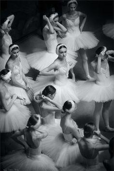 Tutu Ballet, Ballet Dancers, Modern Dance, Arte Van Gogh, Pretty Ballerinas, Silver Blonde, Paris Mode, Ballet Photography, Ballet Beautiful