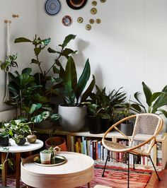 Jason Chongue and Nathan Smith — The Design Files Interior Design Curtains, Interior Plants, Cafe Interior, Mobiles, Diy Wood Desk, Kids Room Curtains, Diy Outdoor Kitchen, Decoration Plante, The Design Files