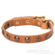 Fashionable #Studded #Leather #Dog #Collar $34.90