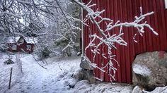Winter at archipelago. Falu red house. Ekenäs, Finland.
