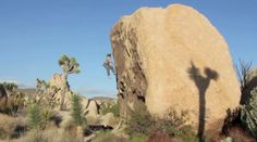 BD athlete Sonnie Trotter bouldering a trio of Joshua Tree mega-classics by Black Diamond Equipment. Black Diamond athlete Sonnie Trotter lives in Canada, and when the snow and rain hits the Great White North every winter, he heads south for sunny skies and crisp stone. Here is a video he shot and edited for us of his visit to the iconic domes and boulders of Joshua Tree National Park in California, where he decided to tackle a trio of mega-classic problems first done by the late, great John…