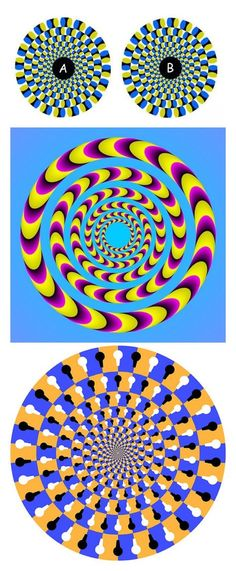 Optical Illusions Spinning-gizmodo.com 바카라잘하는법바카라잘하는법바카라잘하는법바카라잘하는법바카라잘하는법바카라잘하는법바카라잘하는법바카라잘하는법바카라잘하는법바카라잘하는법바카라잘하는법바카라잘하는법바카라잘하는법바카라잘하는법바카라잘하는법바카라잘하는법