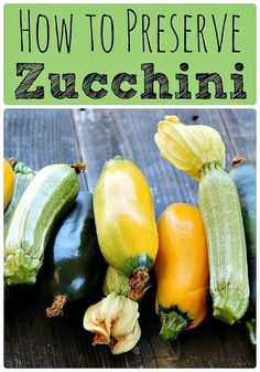 preserving food - How to Preserve Zucchini Ferment, Dehydrate, Freeze, and Can Fermentation Recipes, Canning Recipes, Permaculture, Canning Squash, Canned Zucchini, Vegetable Cake, Vegetable Garden, Warm Potato Salads, Zucchini Flowers