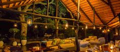 Chapungu Luxury Tented Camp in Thornybush Game Reserve