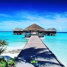 Wednesday Dreaming... - #noble_commitment #wednesday #wednesdays #dream #islands #maldives #ocean #palms #travel #explore #visit #relaxation #picoftheday #photo #photos #photooftheday