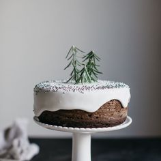 Mini Gingerbread Cake with Rosemary Christmas trees