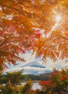 Majestic Mount Fuji | Photo by @danielkordan