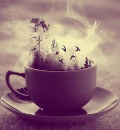 pretty Illustration birds moon night dark Magic evening forest tea cup sepia mist Witch spell witches mystic HERBS beautifiul