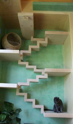10 Unbelievable Cat Friendly Homes - Home decor ideas - Chat Cool Cats, Gatos Cool, Cat Towers, Cat Shelves, Cat Playground, Backyard Playground, Cat Enclosure, Cat Room, Cat Condo
