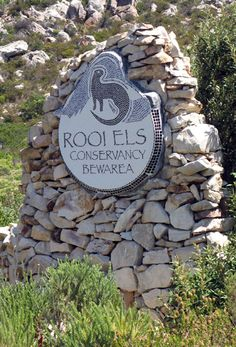 Rooi Els - 20 minutes from Gordons Bay. Table Mountain, 3 Things, Countries Of The World, Pilgrimage, South Africa, African, Lighthouses, Places, Outdoor Decor