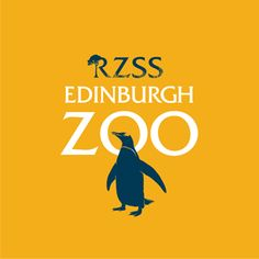 Edinburgh Zoo, £17 per person if booked 3 days in advance. Just for the pandas.