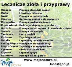 No niby tak 😜😜 Healthy Herbs, Healthy Tips, Natural Cures, Natural Health, Health Diet, Health Fitness, Young Living Oils, Natural Medicine, Nutrition Tips