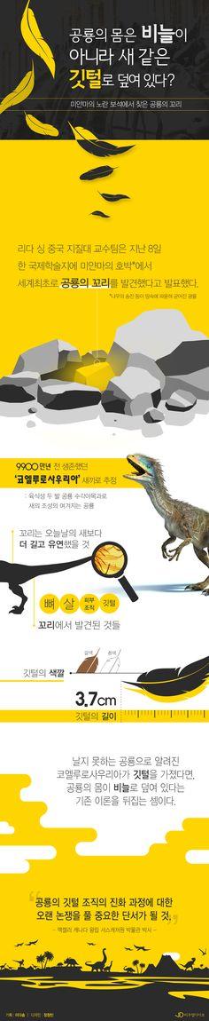 """'인류 최초' 발견된 공룡의 꼬리…""""공룡에 깃털이 있다?"""" [인포그래픽] #dinosaur / #Infographic ⓒ 비주얼다이브 무단 복사·전재·재배포 금지"""