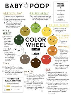 The color of baby poop and what it means infographic cleveland