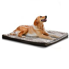 The Dogs Bed Orthopedic Deluxe High density sponge Waterproof Dog BedsRemovable Washable Quality Oxford Fabric Cover Helps Ease Pain of Arthritis  Hip Dysplasia Therapeutic  Supportive ** Continue to the product at the image link.