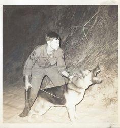 War dog & Sgt. Novak. Cam Ranh, Vietnam 1969