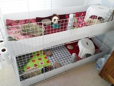 Need ideas for stacking 2 jumbo C&C covered cages Guinea Pig Breeding, Pet Guinea Pigs, Guinea Pig Care, Indoor Guinea Pig Cage, Indoor Rabbit, Small Animal Cage, Small Animals, Hedgehog Pet, Hedgehog Cage