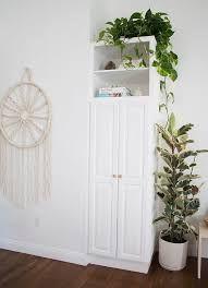 Image result for plants in hallways