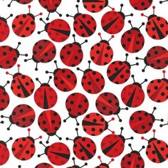 LAMINATED cotton fabric by the yard - Ladybugs Urban Zoologie Anne Kelle (aka oilcloth, slicker, coated) WIDE BPA free lady bugs ladybird