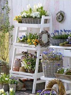 flower patio.