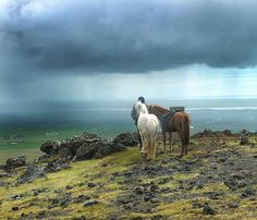 A caballo por #Islandia #Iceland #Tormenta