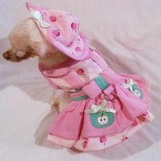 Apple Picking Dog Harness Dress 4 Piece Set