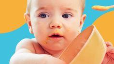 Ein Baby spielt mit seiner Schüssel, Beikost einführen gelingt am besten mit einem Beikostplan.