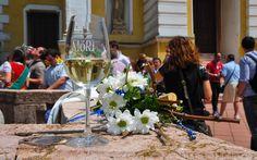 Hrubos Zsolt HELLO MÓR! MÓRI BORNAPOK 2016 Rövid magyarázatként a HELLO MÓR mivel fúvószenei fesztivál az idei. A vendég zenekari tagok a fogadó város nevével köszöntik egymást, mint amikor mi is nyáron a Csehországban HELLO CHEB köszönéssel üdvözöltük a helyieket. Több kép Zsolttól: www.facebook.com/zsolt.hrubos és www.hrubosfoto.hu Table Decorations, Facebook, Furniture, Home Decor, Decoration Home, Room Decor, Home Furnishings, Home Interior Design, Dinner Table Decorations