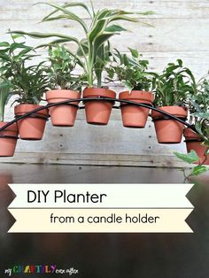 DIY Planter From a Candle Holder - Clever! Be great for herbs in the windowsill