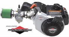 Briggs World Formula Racing Engine